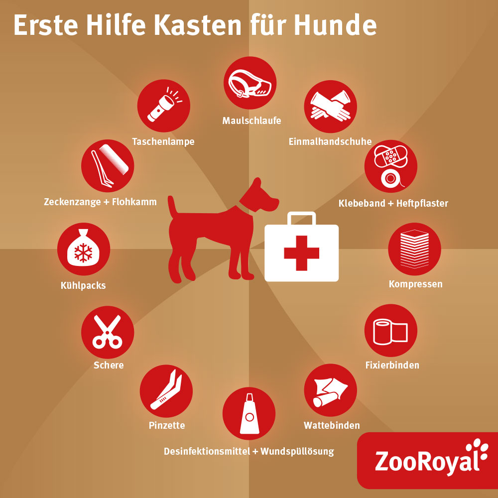 Erste Hilfe Kasten für Hunde
