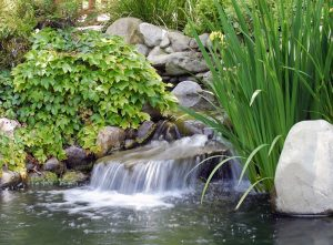Teichbau: Bachlauf im Garten