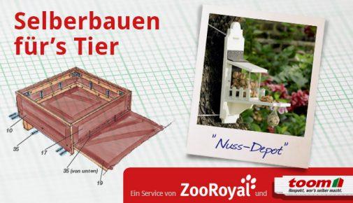 Eichhörnchenfutterhaus selber bauen
