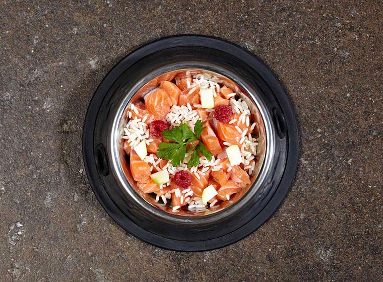 Rezept Lachs Zucchini