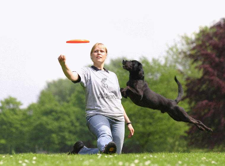 Hundefrisbee Karin Actun