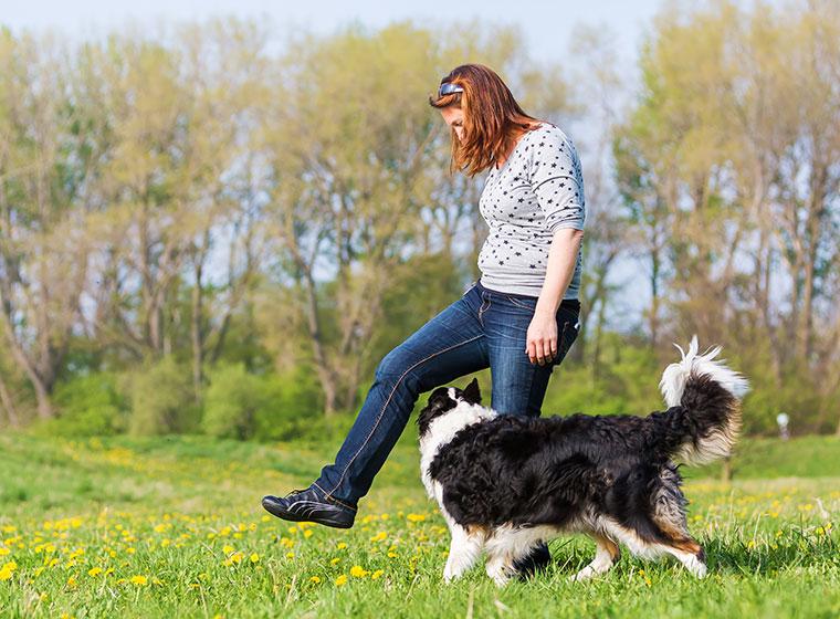 Hundesport: Dogdance