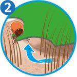 Zecke entfernen: Zeckenkarte Schritt 2