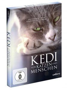 DVD Kedi - Gewinnspiel
