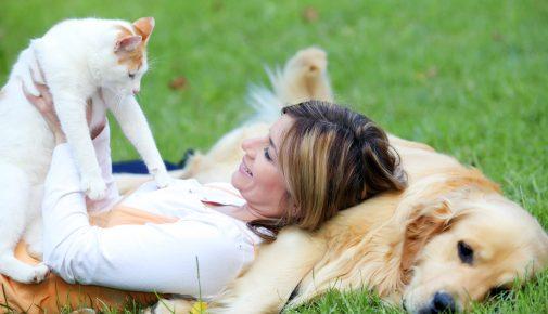 Liebe-Dein-Haustier-Tag