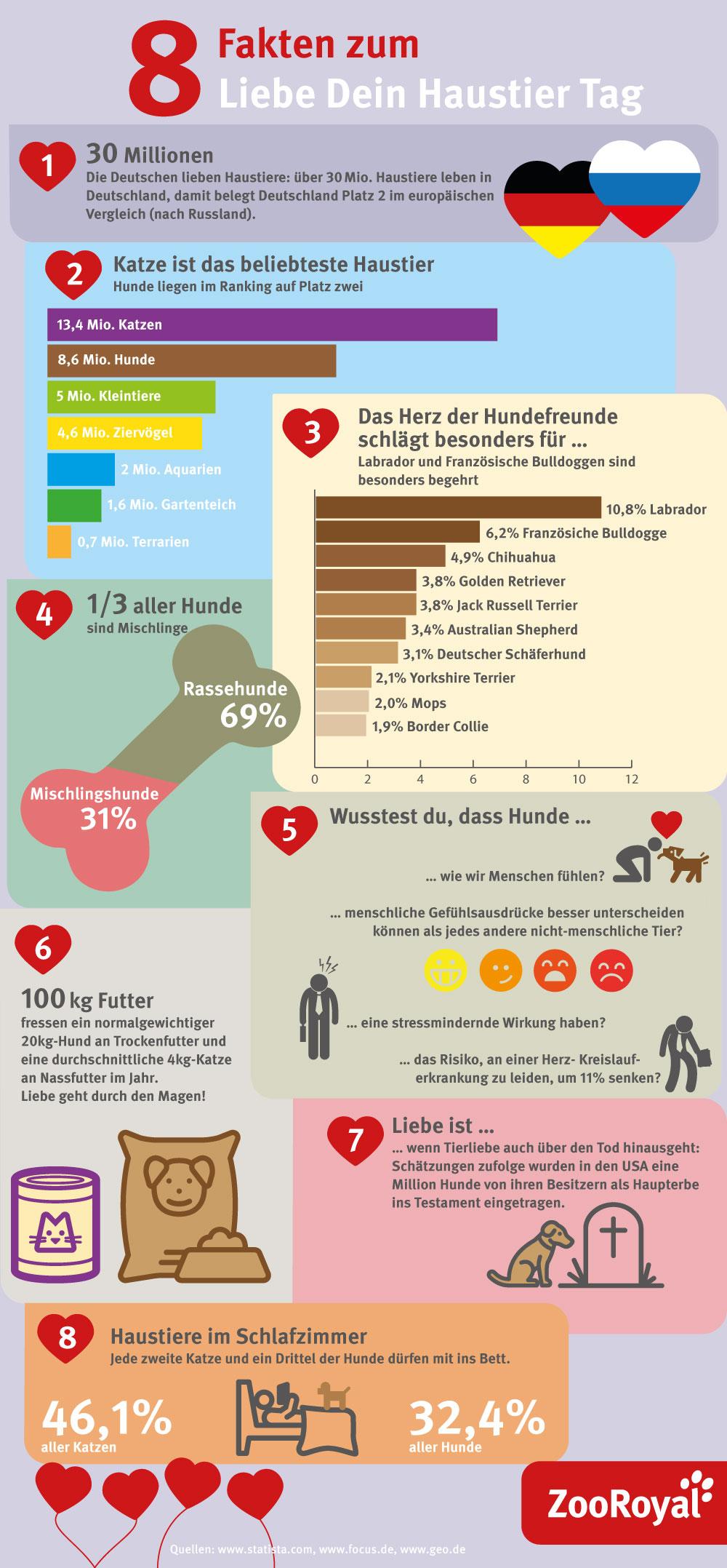 Infografik: 8 Fakten zum Liebe-Dein-Haustier-Tag