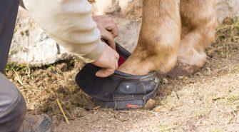 Hufschuh für Pferde
