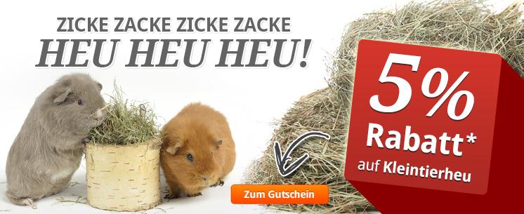 Sichern Sie sich jetzt einen 5%-Gutschein für den Kauf von Kleintierheu!