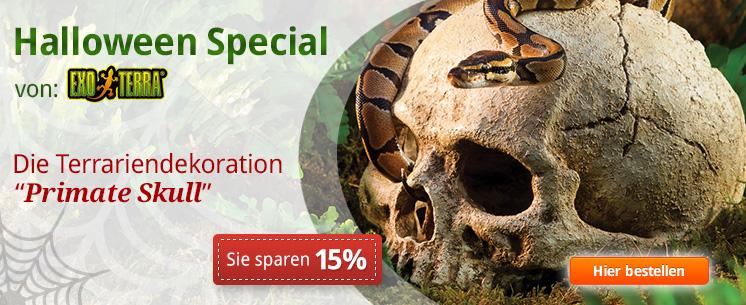 """DAS Halloween Special von exo terra: Die Terrarriendekoration """"Primate Skull"""". Jetzt 15% sparen uhnd losgruseln!"""
