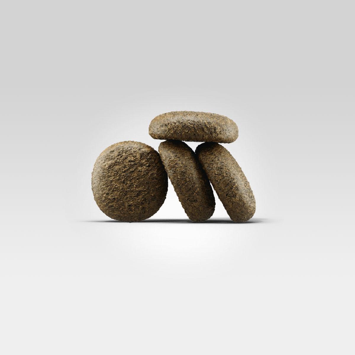 josera hundefutter lachs und kartoffel. Black Bedroom Furniture Sets. Home Design Ideas