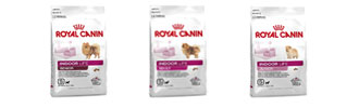 Royal Canin Indoor Life Hundefutter entdecken bei ZooRoyal