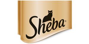 katzenzubeh r katzenbedarf g nstig kaufen bei zooroyal. Black Bedroom Furniture Sets. Home Design Ideas