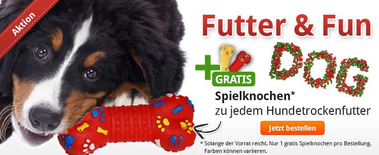 Gratis Spielkonchen für Ihren Hund! Jetzt zu jedem Hundetrockenfutter