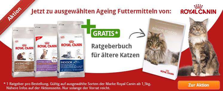 Jetzt zu ausgewählten Ageing Futtermitteln von Royal Canin: ein Ratgeberbuch für ältere Katzen gratis!