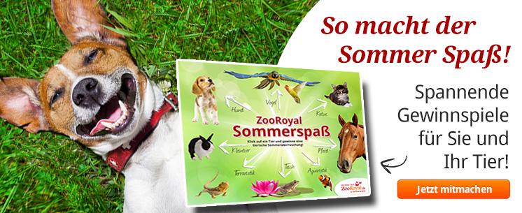 Das große ZooRoyal Sommerspass Gewinnspiel