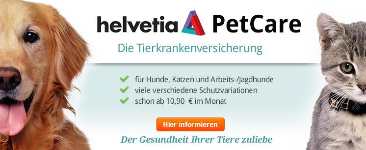 Hund und Katze schützen - mit der Helvetia PetCare Tierkrankenversicherung bei ZooRoyal.de