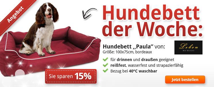 """Hundebett der Woche: Lebon Hundebett """"Paula"""" - Jetzt 15% günstiger!"""