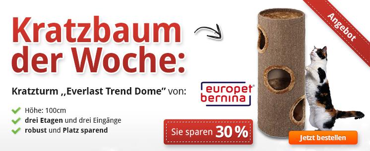 """Unser Kratzbaum der Woche: """"Everlast Trend Dome"""" - Jetzt 30% reduziert!"""