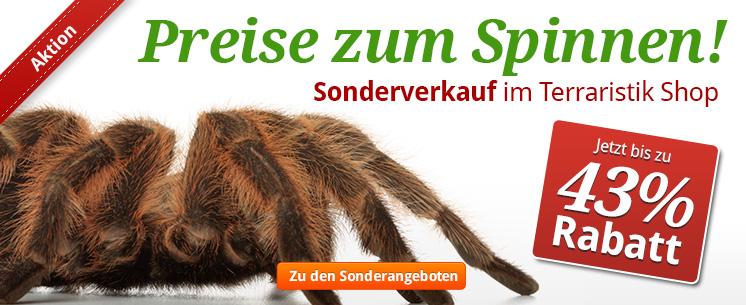 Preise zum Spinnen! Sonderverkauf in unserem Terraristik Shop. Schnell zuschlagen und bis zu 43% sparen!