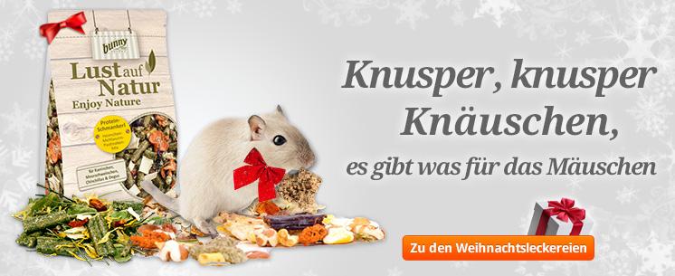 Knusper, knusper, Knäusschen, es gibt was für das Mäusschen. Snacks und Futter für die Schlemmerschnute.