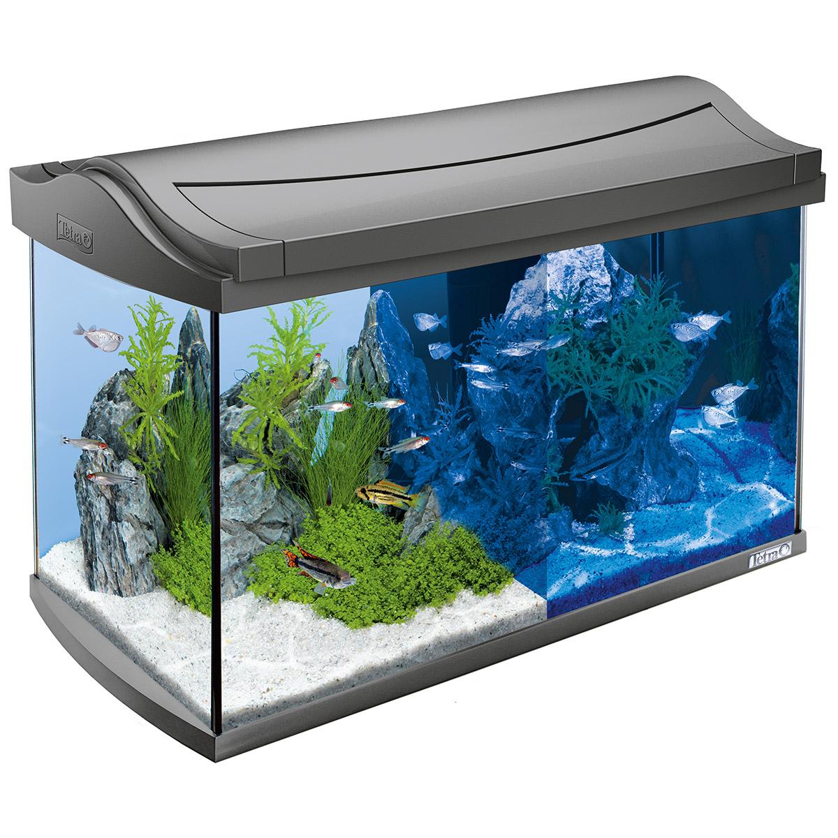 tetra aquaart led aquarium komplettset anthrazit On aquarium komplettset