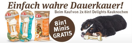 8in1 Snack gratis