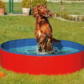 Doggy Pool Hundeschwimmbecken