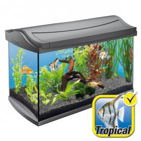 Tetra AquaArt Aquarium-Komplett-Set 60 Liter anthrazit
