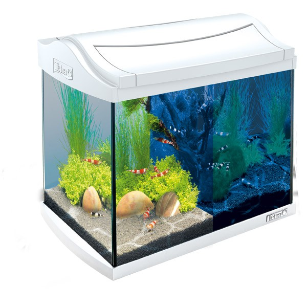 tetra aquaart led aquarium komplett set wei. Black Bedroom Furniture Sets. Home Design Ideas