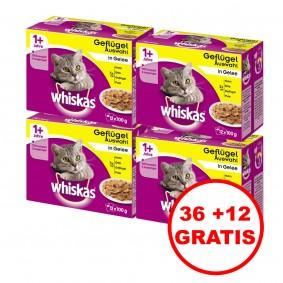 Whiskas Katzenfutter 1+ Geflügelauswahl in Gelee 36 plus 12 gratis