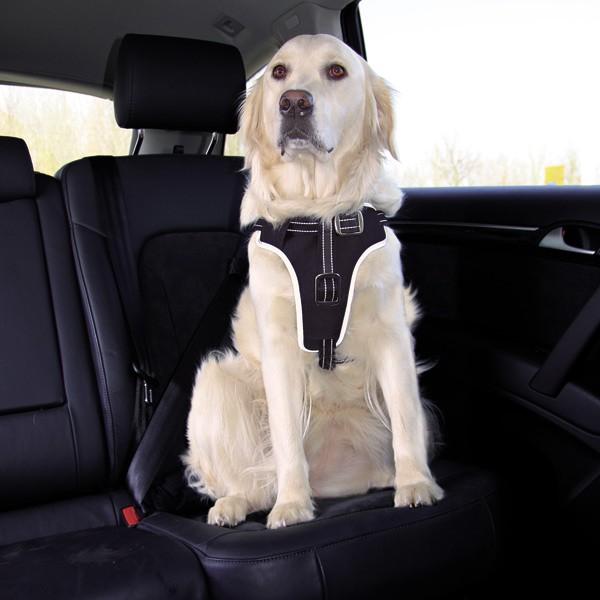 trixie dog protect sicherheitsgeschirr f r hunde. Black Bedroom Furniture Sets. Home Design Ideas
